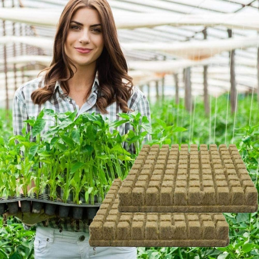 Steinwolle Anzuchtmatte Tray Hydroponic Grow Rockwool Cubes Soilless Anbau Compress Base 1//25//50er Anzuchtmatte Grodan Steinwollmatte Stecklingsblock Stecktray Rockwool//Stonewool Grow Cubes