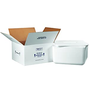 """Boxes Fast BF250C Insulated Shipping Box with Foam Container, 17"""" x 17"""" x 9"""", Medium, White"""