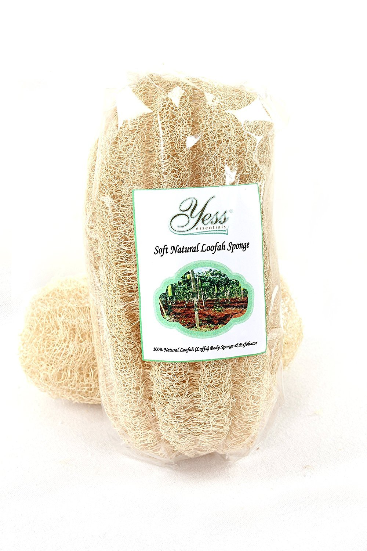 Yess Essentials morbida spugna di Luffa naturale (misura standard) Yess Essentials Ltd