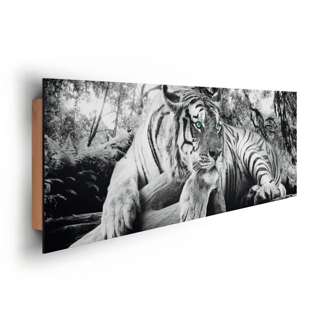 REINDERS Tiger guckt dich an - Wandbild 90 x 30 cm