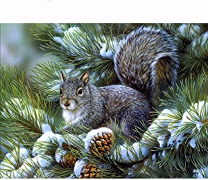 LVIITIS DIY 5D Diamond Painting Squirrel Kits for Adults Full Drill,Diamond Arts Dots Pictures Arts Craft for Home Wall Decor(1214inch/3040cm)