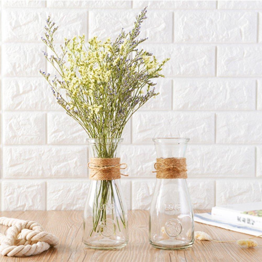 Skyeye Gran Carta de Vidrio florero Transparente Sala de Estar arreglo de Flores Decorativo florero seco Pantalla de la Planta Botella de la Planta: ...