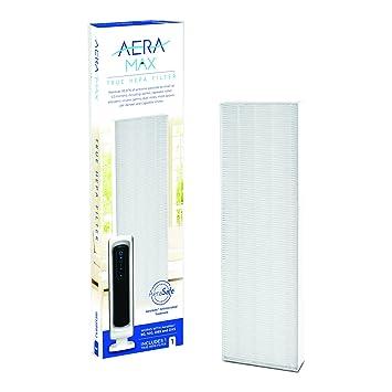 Fellowes 9287001 Recambio de filtro apra purificador de aire Aeramax DX5 Color blanco: Amazon.es: Hogar