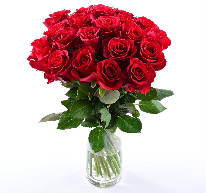 Blumensversand- Blumen Pur! - Rote Rosen aus Afrika - 20 Stück rote Rosen pur! mit Gratis - Grußkarte