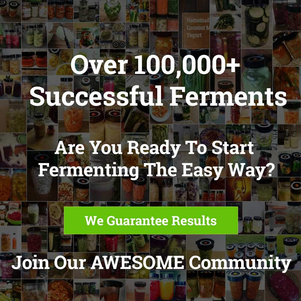 Easy Fermenter Wide Mouth Lid Kit (3 Lids + 3 Weights + Pump) - The Complete Starter Kit With Everything You Need To Begin Fermenting by Nourished Essentials (Image #7)