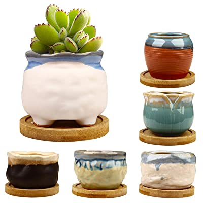 2.95 inch Succulent Pots,Mini Flower Pots with Drinage,Succulent Planters with Hole,Small Planter Pots,Ceramic Pots for Garden,Cactu,Colourful Glaze Base Serial: Garden & Outdoor