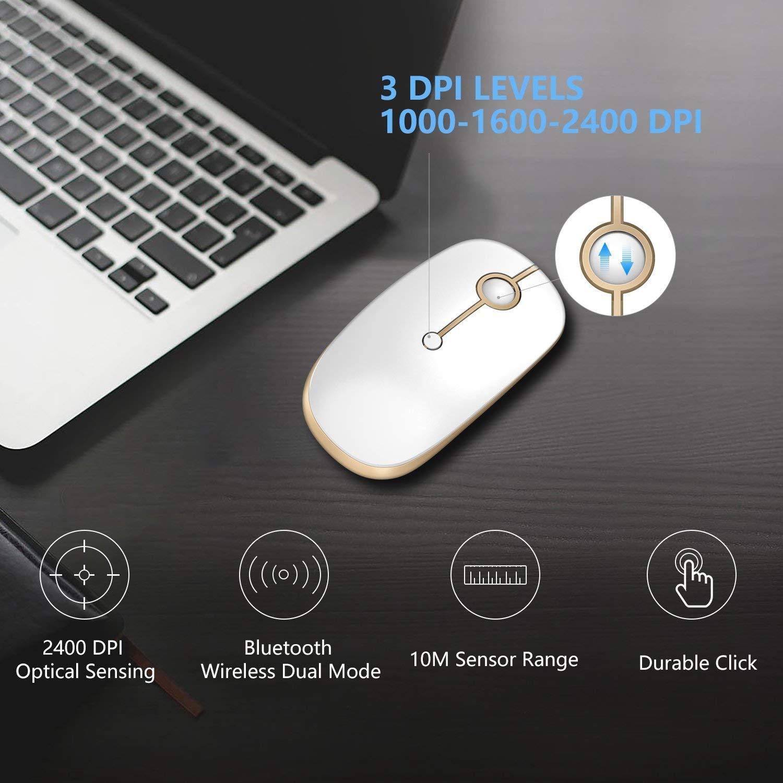 Jelly Comb Rat/ón Inal/ámbrico de 2,4 GHz con Receptor Nano para Ordenador Port/átil//Macbook//Tableta Preciso y Silencioso Negro y Oro