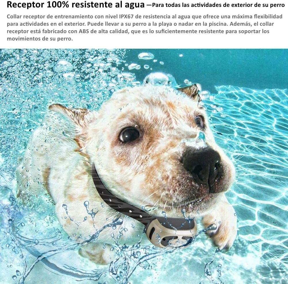 GLEADING Collar de Adiestramiento para Dos Perros Recargable con Mando a Distancia de Rango de 500 Metros, Pitido de Alerta y Modo de Vibración - Resistencia al Agua de IP67: Amazon.es: Productos