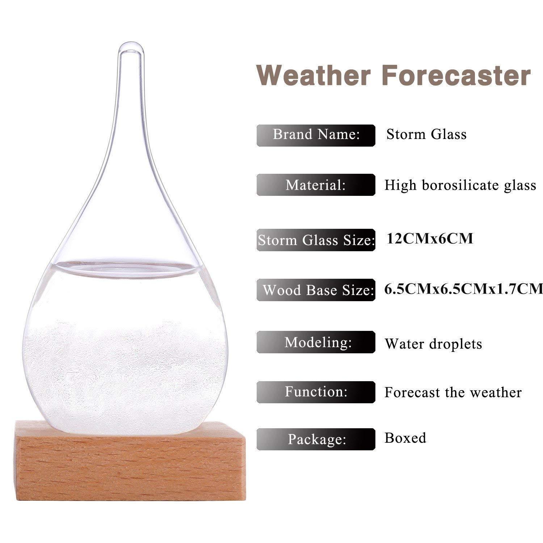 Welldone/® Glass Storm Barometer Bouteille d/écorative cr/éative /à la maison.-6*12 Bouteille de pr/évisions m/ét/éo