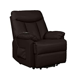 Domesis Renu Power Lift Chair Recliner