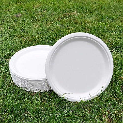 Sugarcane Dinner Plate 26cm(50pack) BIOPAC Natural Alternative For Plastic or Paper P101 ( & Mozaik 20 White Silver Rim Plastic Plates 23cm: Amazon.co.uk ...
