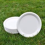 Sugarcane Dinner Plate 26cm(50pack) BIOPAC Natural Alternative For Plastic or Paper P101 (50)