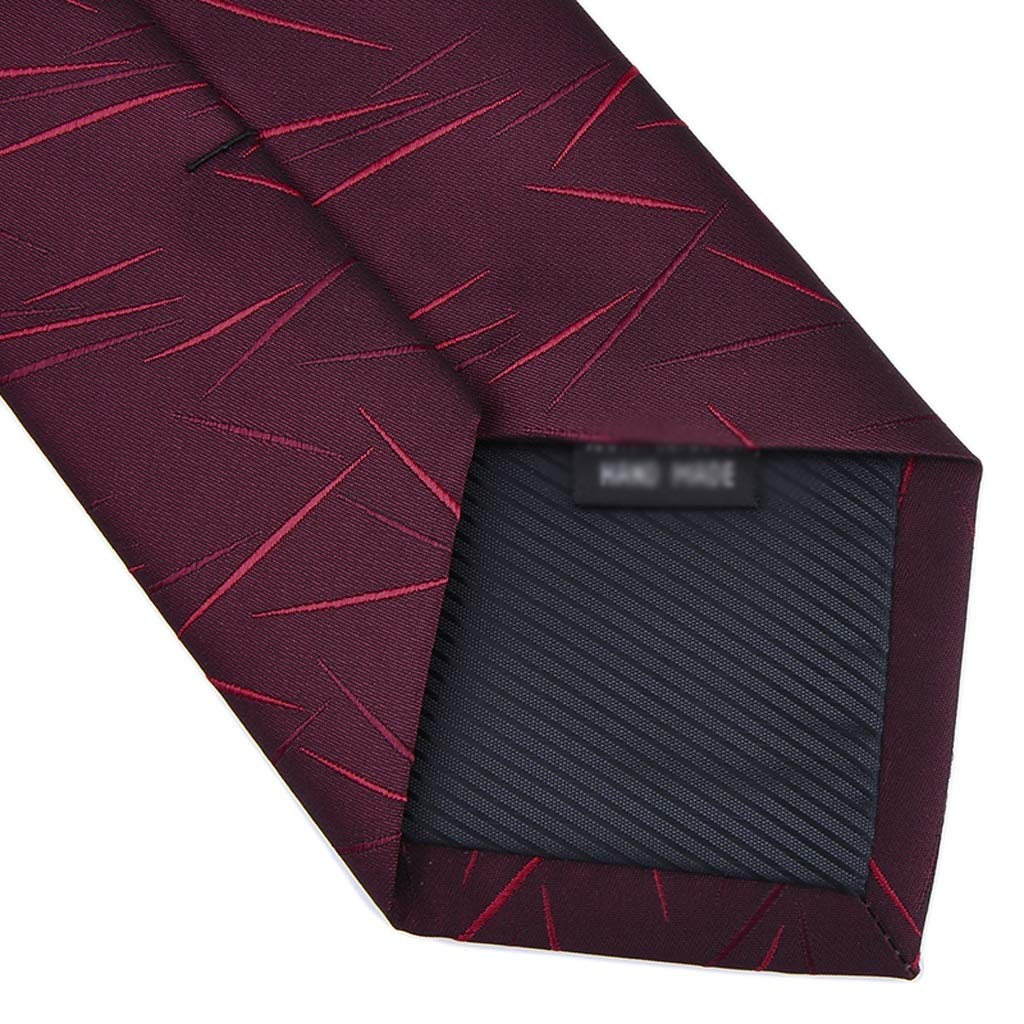 NIEHFIT Mens Casual Tie Business Dress Irregular Pattern Zipper Free Knotted Gift Box Necktie Polyester Neckwear Formal Dress