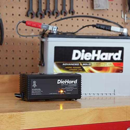 DieHard 71219 is one of the best motorcycle battery chargers