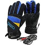 PsmGoods® Motocicletta riscaldati Guanti 12V impermeabile anti congelamento Blu