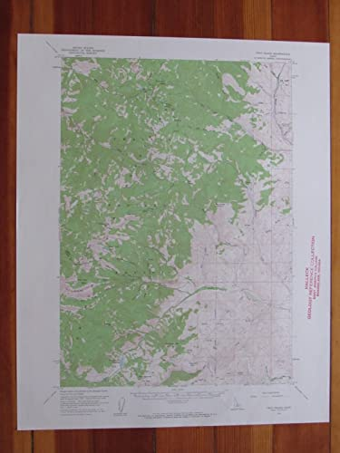 Amazon.com: Twin Peaks Idaho 1960 Original Vintage USGS Topo Map ...