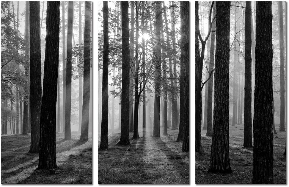 Visual Art Decor 3 Pieces Black and White Sunshine Foggy Forest Trees Canvas Prints Living Room Home Wall Decoration