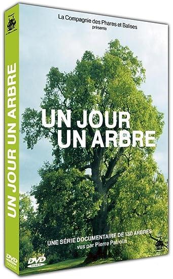 Un Jour un arbre