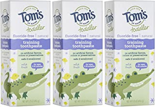 product image for Tom's of Maine Toddlers Fluoride-Free Natural Toothpaste in Gel, Mild Fruit, 1.75 Fl Oz, Pack of 3