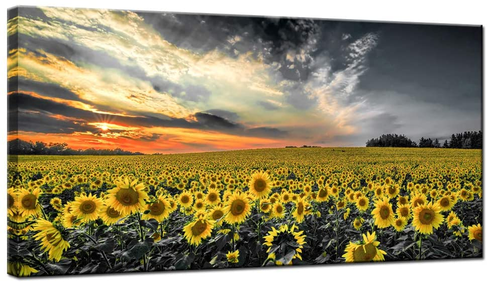 LevvArts - Sunflower Canvas Prints Wall Art Black and White Yellow Flower Pictures Nature Landscape Paintings for Home Living Room Bedroom Wall Decoration Ready to Hang