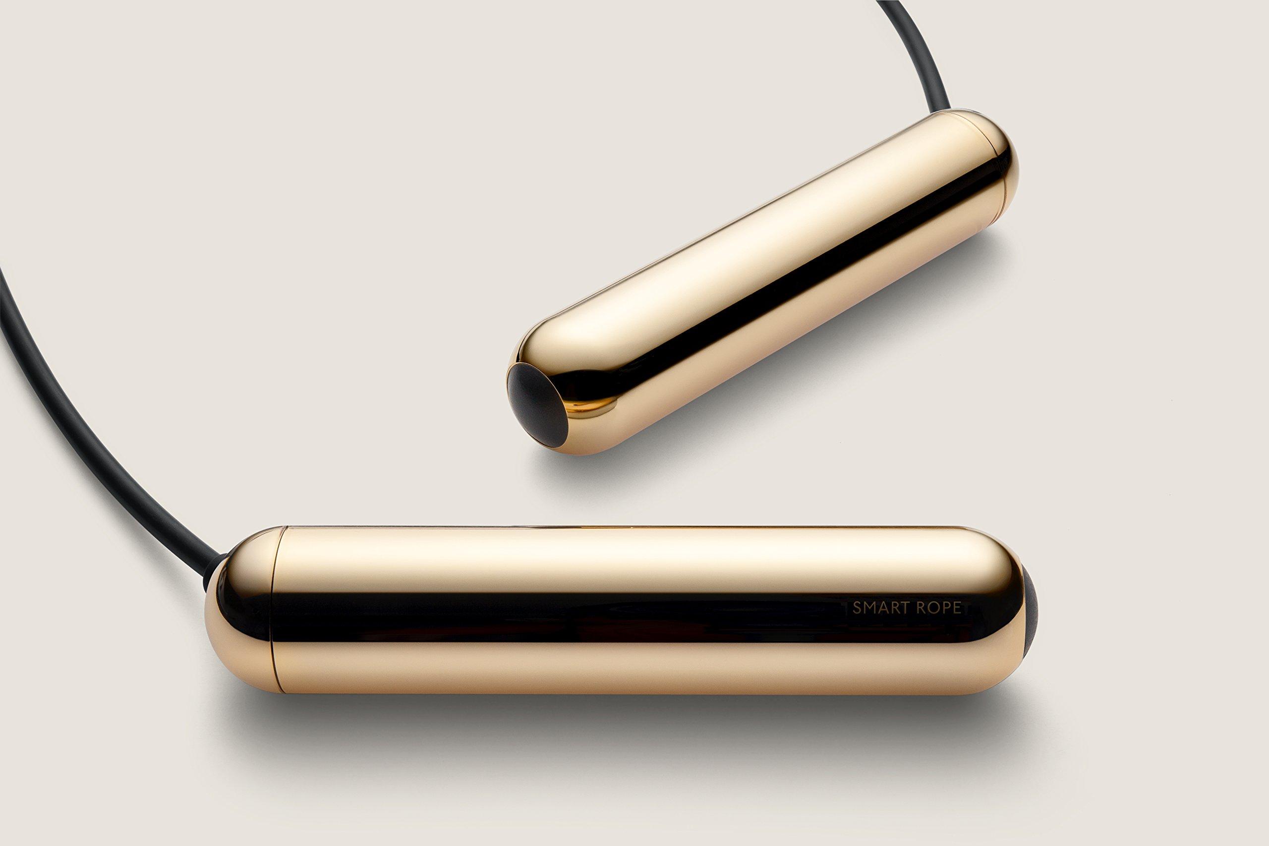 TANGRAM Factory Smart Rope - LED Embedded Jump Rope (Gold, Medium) by TANGRAM (Image #2)