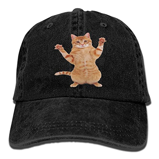 Kitty Cat Denim Cap Cowboy Hat Polo Style Baseball Cap for Men   Women at  Amazon Men s Clothing store  57a22e554b1