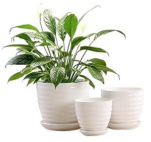 Fasmov Round Modern Ceramic Garden Flower Pots White Succulent Cactus Plant Pots, Set of 3