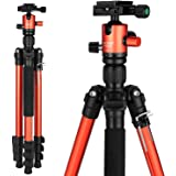 "Mactrem Camera Tripod, 62.5"" Lightweight Alluminum Alloy DSLR Tripod Ball Head Travel Tripod, Detachable Monopod, Carry Case for Video/Projector Tripods, (Load: 33lbs, Weight: 2.9lbs) Orange CT62"