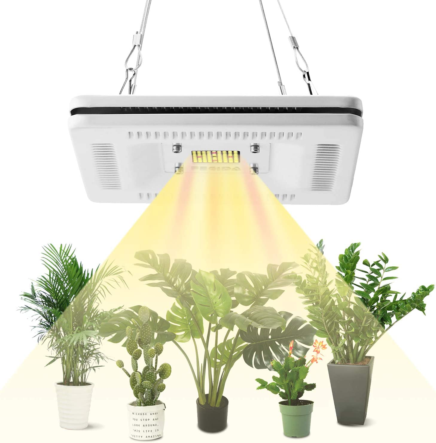FECiDA 50W LED Grow Light para plantas de interior, 250W CFL HPS Grow Lights Equivalente, impermeable LED Grow Plant Light, profesional Sunlike Full Spectrum Grow Lamp: Amazon.es: Iluminación