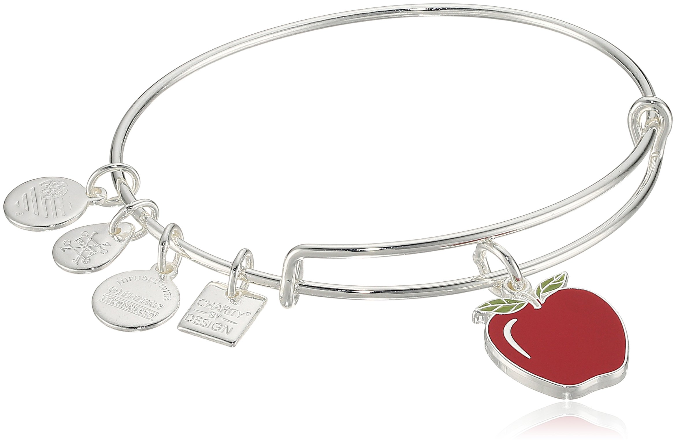 Alex and Ani Charity By Design, Apple EWB, Shiny Silver Bangle Bracelet