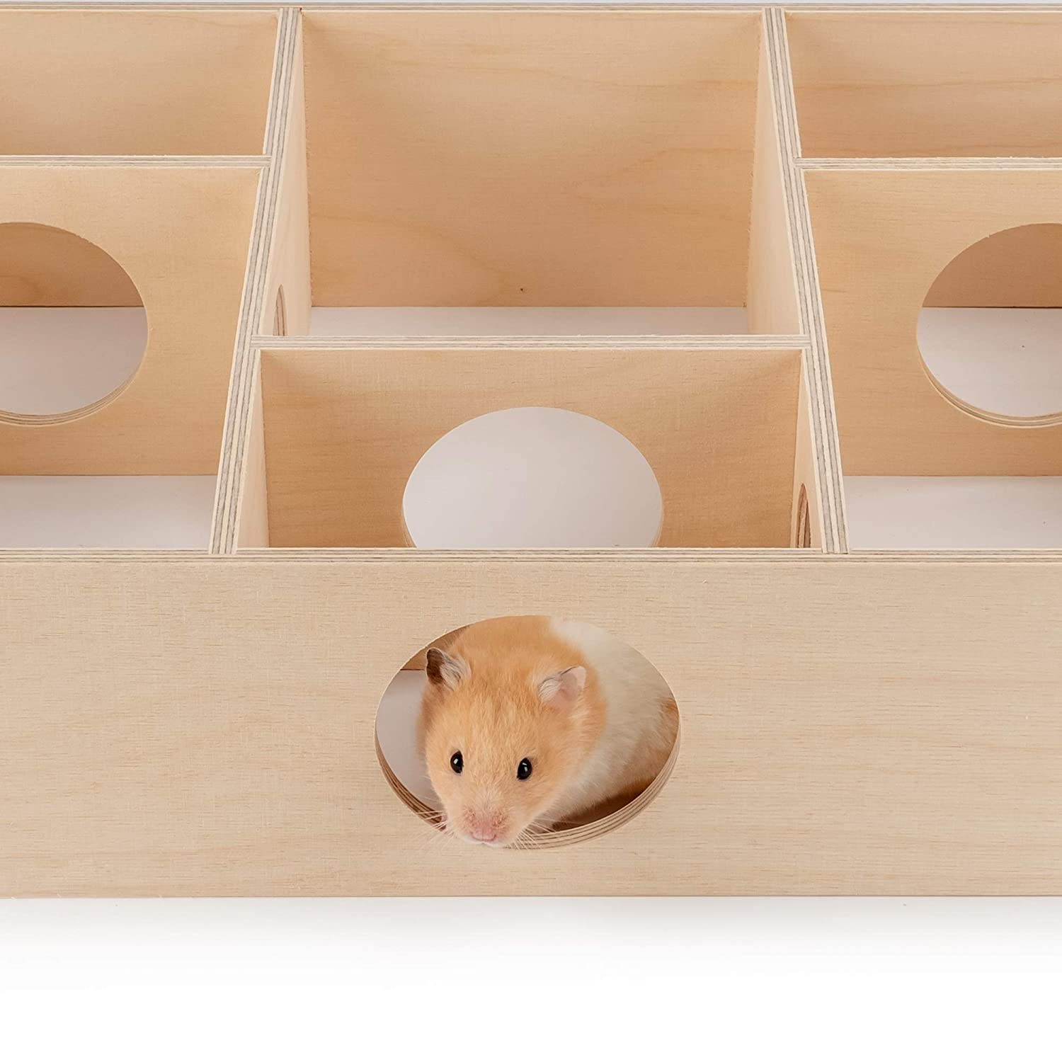 Multi-Room Hideouts /& Tunnel Exploring Toys for Hamster Gerbils Mice Lemmings Rats and Other Small Rodents Niteangel Multi-Chamber Hamster House Maze