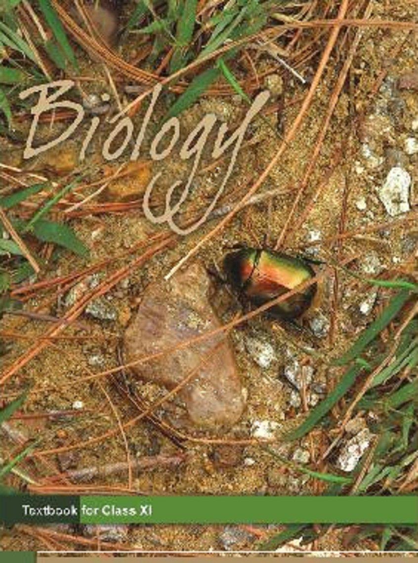 12th Class Biology Book In Hindi