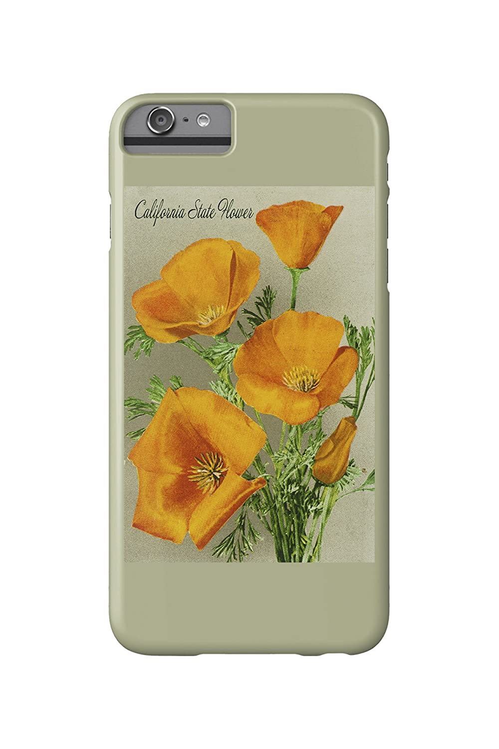 Amazon California State Flower The Californian Poppy