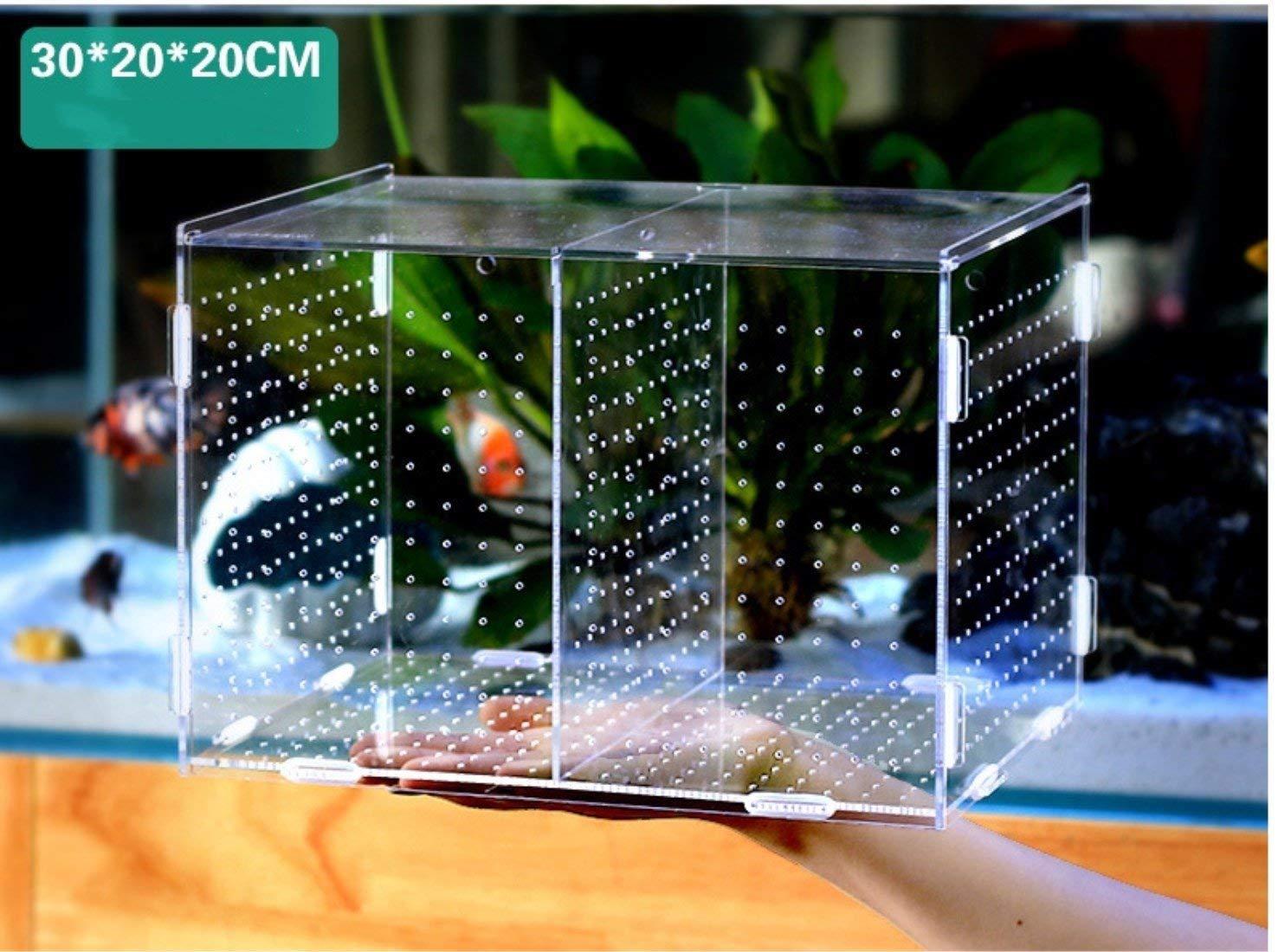 FITMATE Boîte d'élevage de Poisson Ventouses en Plastique Aquarium Éclosion Boîte en Acrylique de Haute Qualité Accessoire d'Aquarium Multifonctionnel Boîte à Frai 30 x 20 x 20 cm