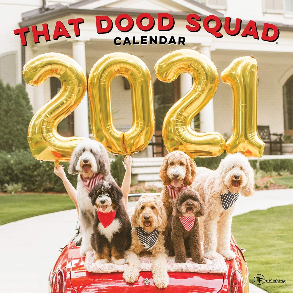 """TF PUBLISHING 2021 The Dood Squad Monthly Wall Calendar - Dog Photography - Appointment Tracker - Contacts and Notes Page - Home or Office Planning/Organization - Premium Gloss Paper 12""""x12"""""""