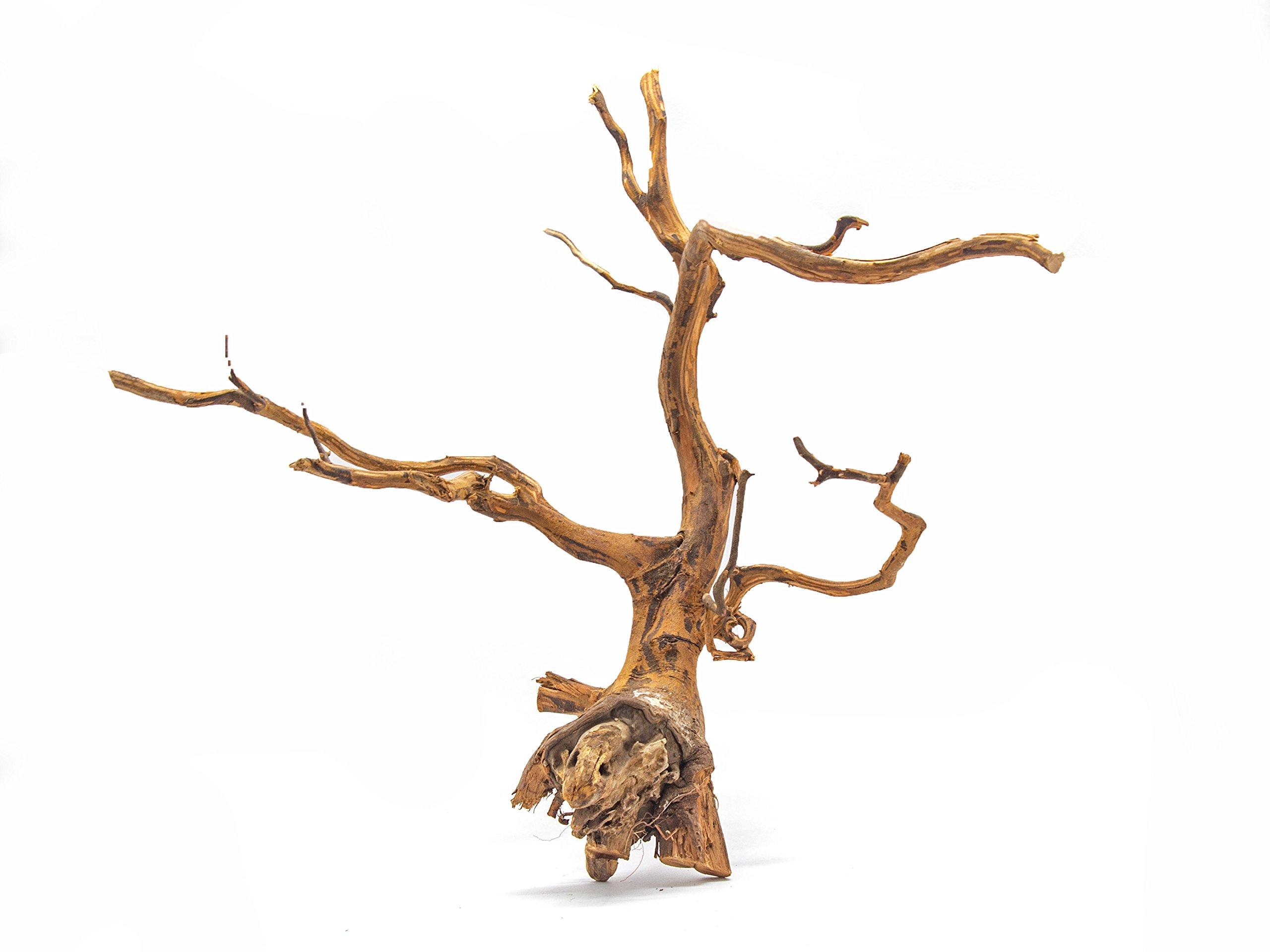 Aquatic Arts 1 Medium Piece of Amazon Natural Aquarium Driftwood, 9-12'' by Aquatic Arts