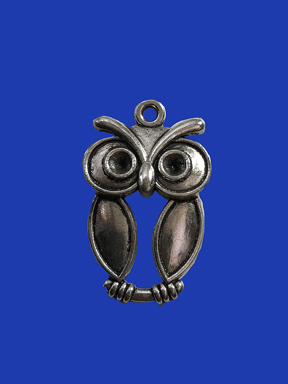 Big Eye Owl Silver Tone Earrings Jewelry nickel free hooks