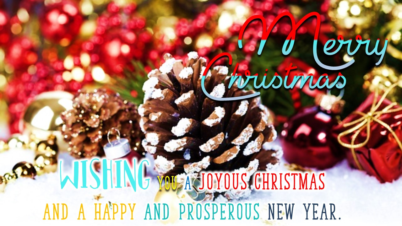 Amazon.com: Merry Christmas Greeting and Happy New Year 2020