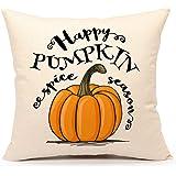 Happy Pumpkin Spice Thanksgiving Throw Pillow Cover Cushion Case 18 x 18 Inch Cotton Linen Autumn Fall Halloween Home Decor