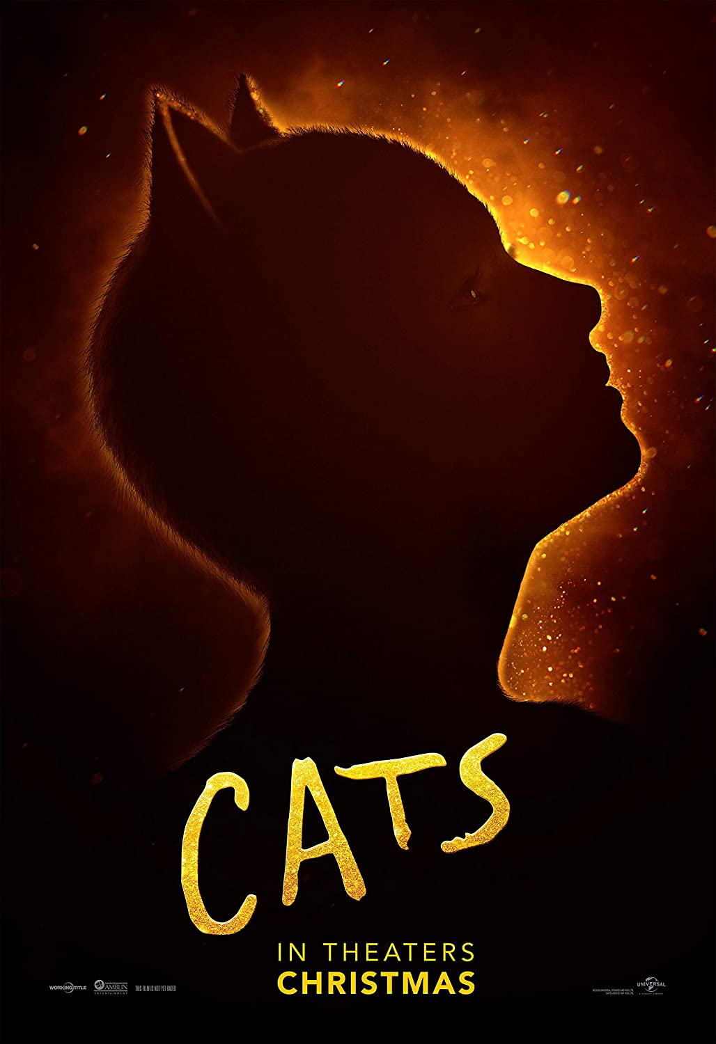 "Amazon.com: Cats (Live Action Movie) 2019 Poster 12""x18"": Posters & Prints"