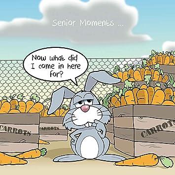 Twizler Carte Humoristique Avec Lapin Carottes Et D Une Senior