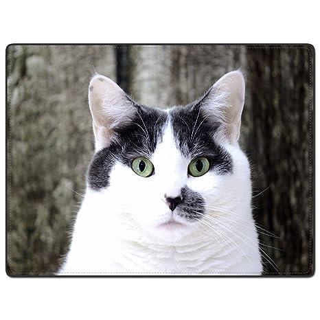 tslook gatos gato camuflaje fondo Home Welcome Felpudo alfombra
