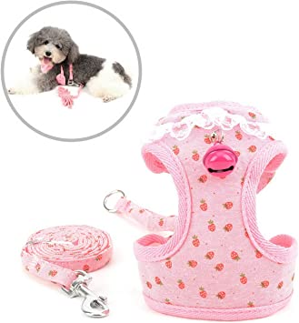 smalllee/_lucky/_store Lace Bell Girls Small Dog Vest Harness and Lead Set for Walking Escape Proof Cat Harness with Leash No Pull Soft Mesh Padded Adjustble Puppy Yorkie Chihuahua,Pink Strawberry,S