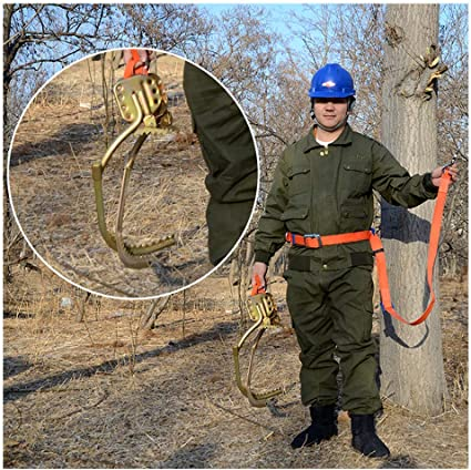Electricista trepando árboles de los pies Hebilla, escalada S ...