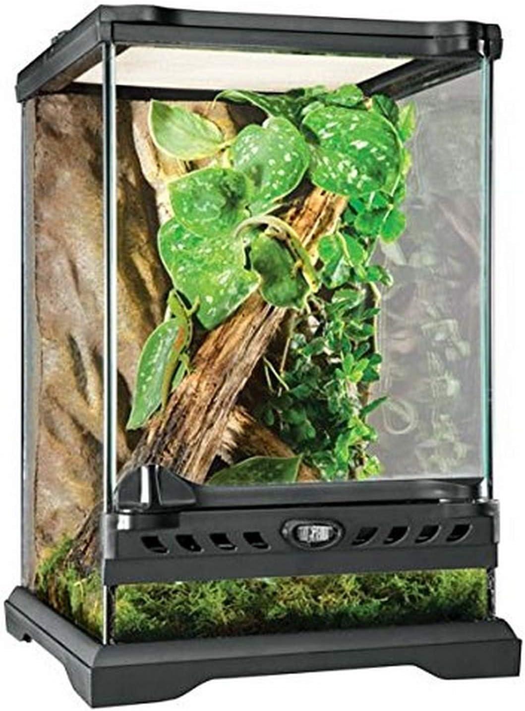 Exoterra Terrarium en Verre pour Reptiles et Amphibiens 20 x 20 x 30 cm