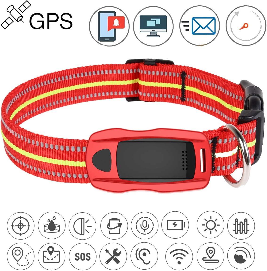 Localizador GPS, GPS + LBS + WiFi posicionamiento Collar GPS para Alarma de Perro con rastreador para Animales Gratis App antipérdida