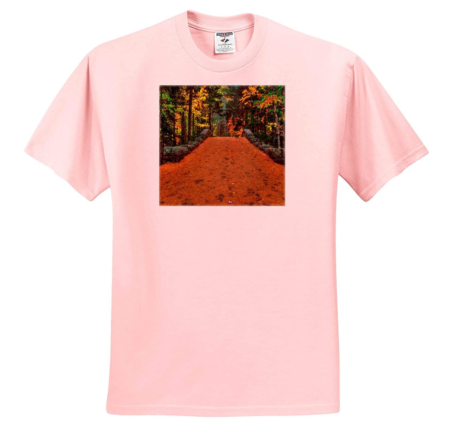 Landscapes Trail Through The Forest Adult T-Shirt XL 3dRose Mike Swindle Photography ts/_317148