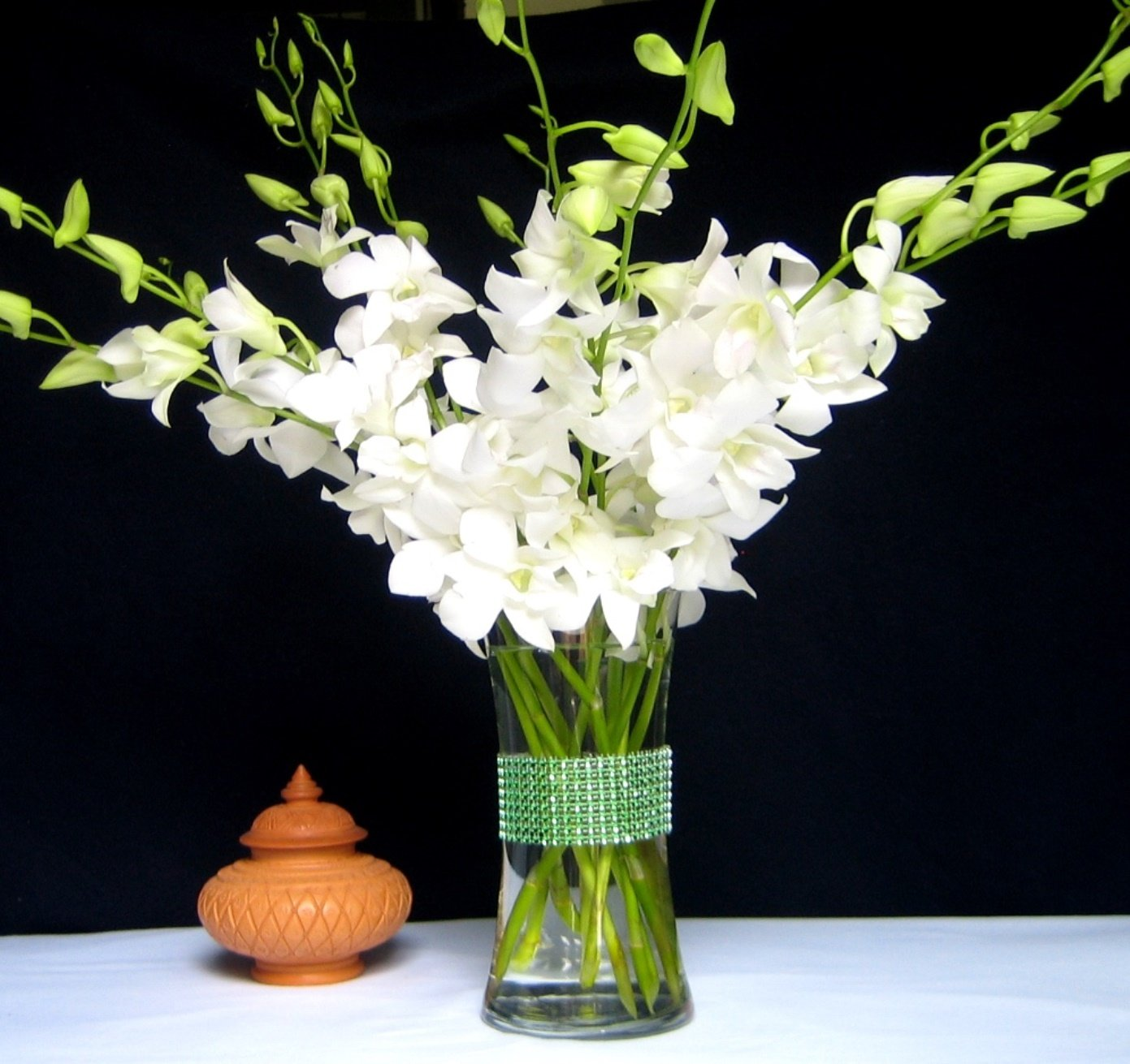 Fresh Flowers - Just Orchids White Dendrobium with Vase by Just Orchids