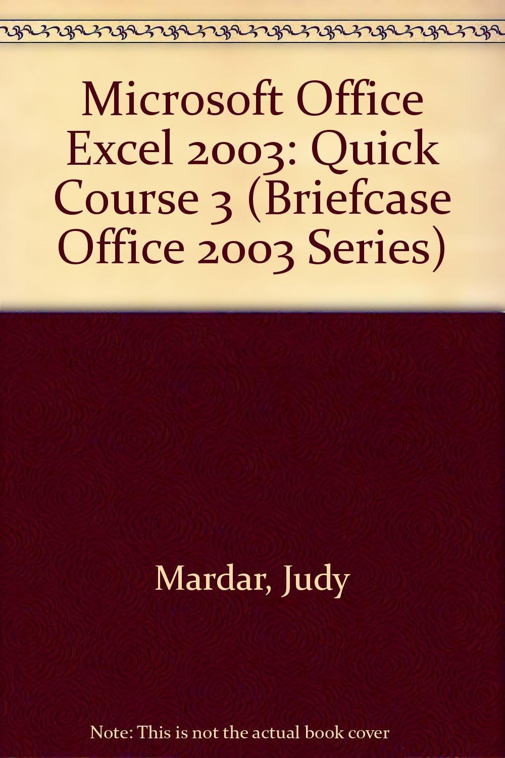 Download Microsoft Office Excel 2003: Quick Course 3 (Briefcase Office 2003 Series) ebook