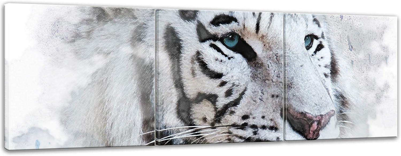 Bilderdepot24 Cuadros en Lienzo Lámina Reproducción Acuarela Tigre Blanco II 180 x 60 cm 3 Piezas - Listo tensa, Directamente Desde el Fabricante: Amazon.es: Hogar